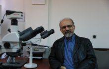 دکتر پیمان عشقی با حکم وزیر بهداشت به سمت مدیرعامل سازمان انتقال خون منصوب شد